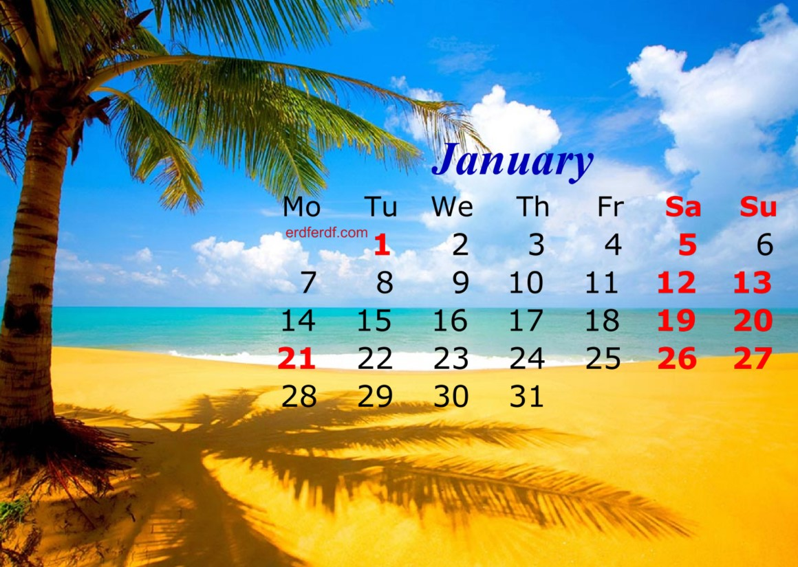 january 2019 calendar template nature beach