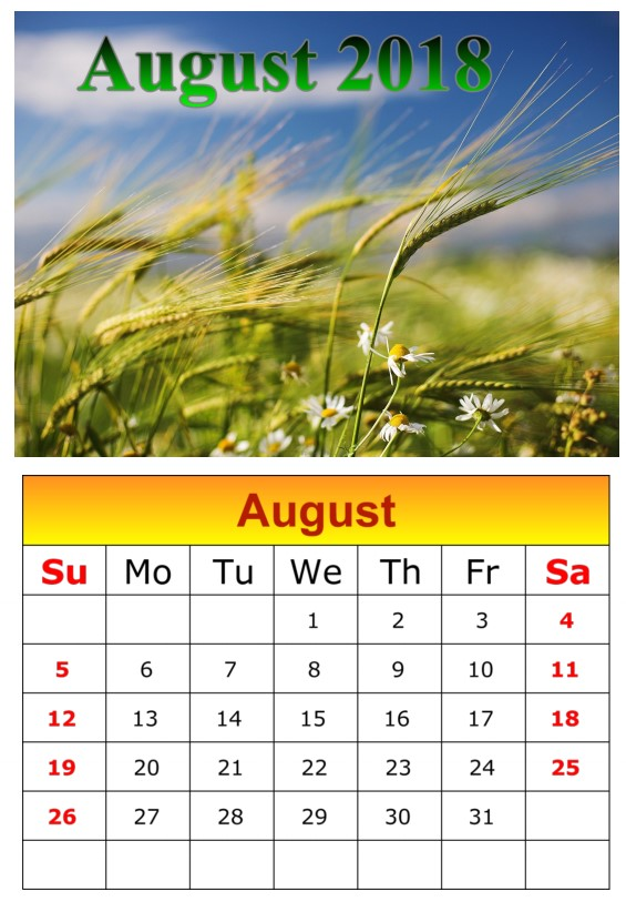 Calendar August 2018 UK Weather