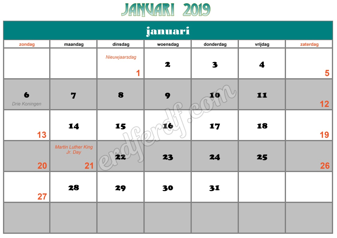 1 January Printable Calendar 2019 Nz