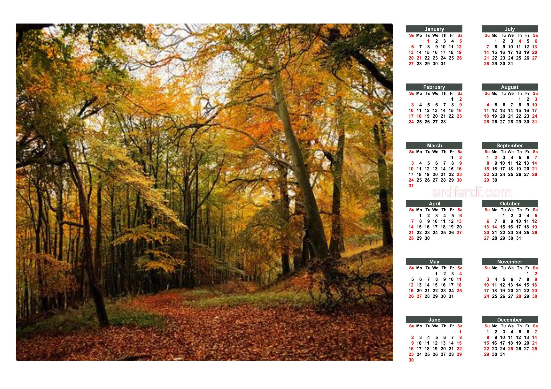 5 Printable 2019 Calendar With Federal Holidays