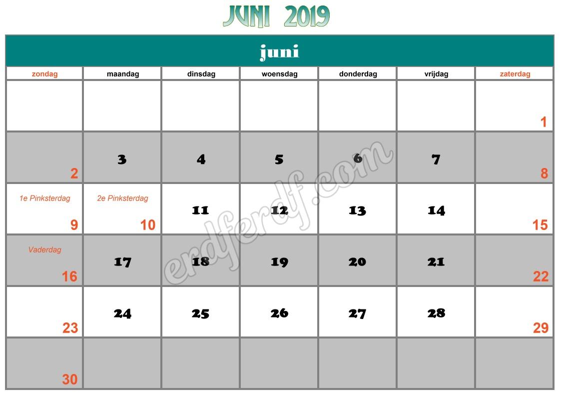 6 Juni Printable Calendar 2019 Nz
