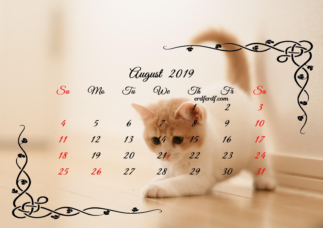 8 August Printable Calendar 2019 Cute Cats