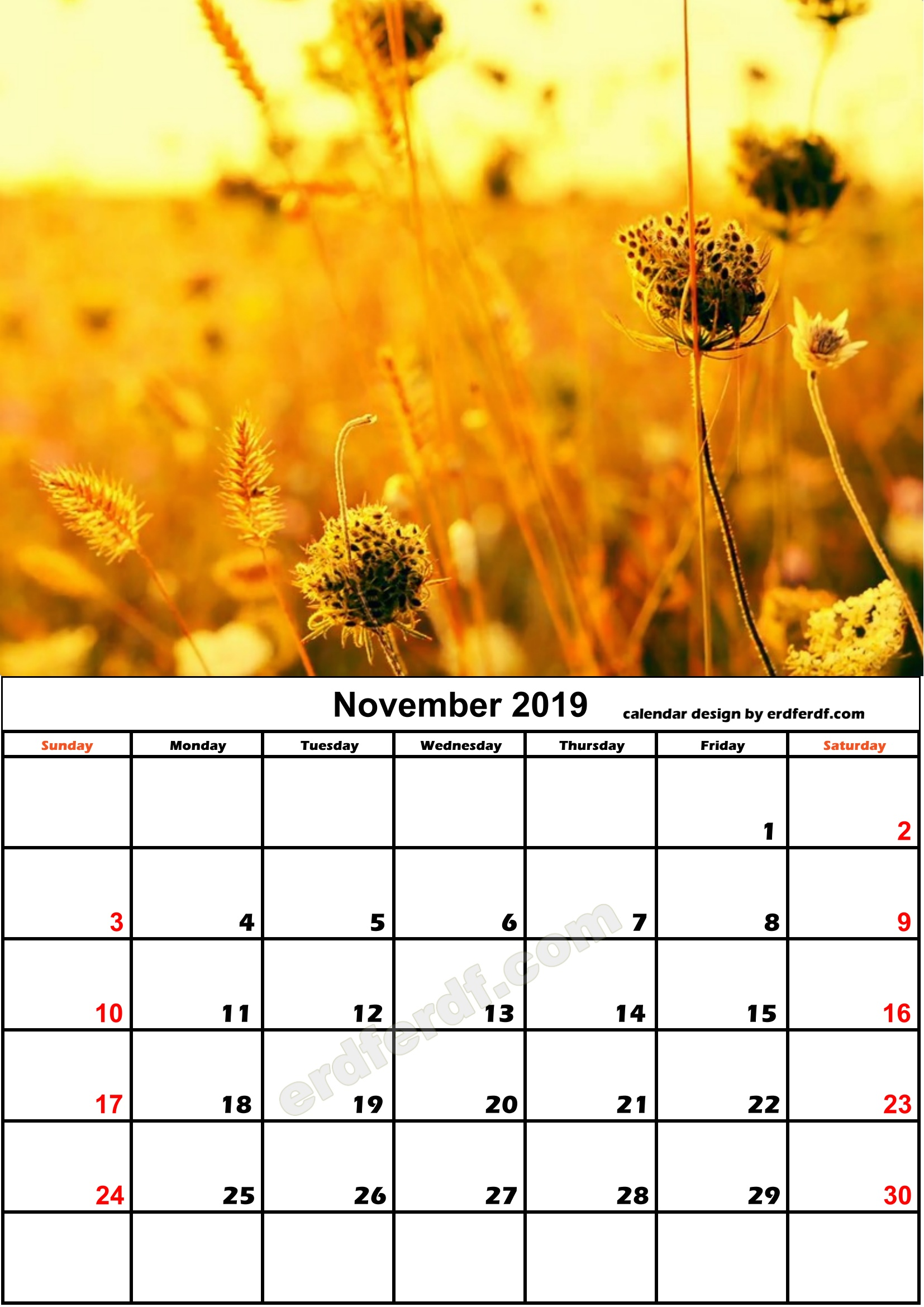 11 November Flower Nature Calendar Monthly 2019 Free Download
