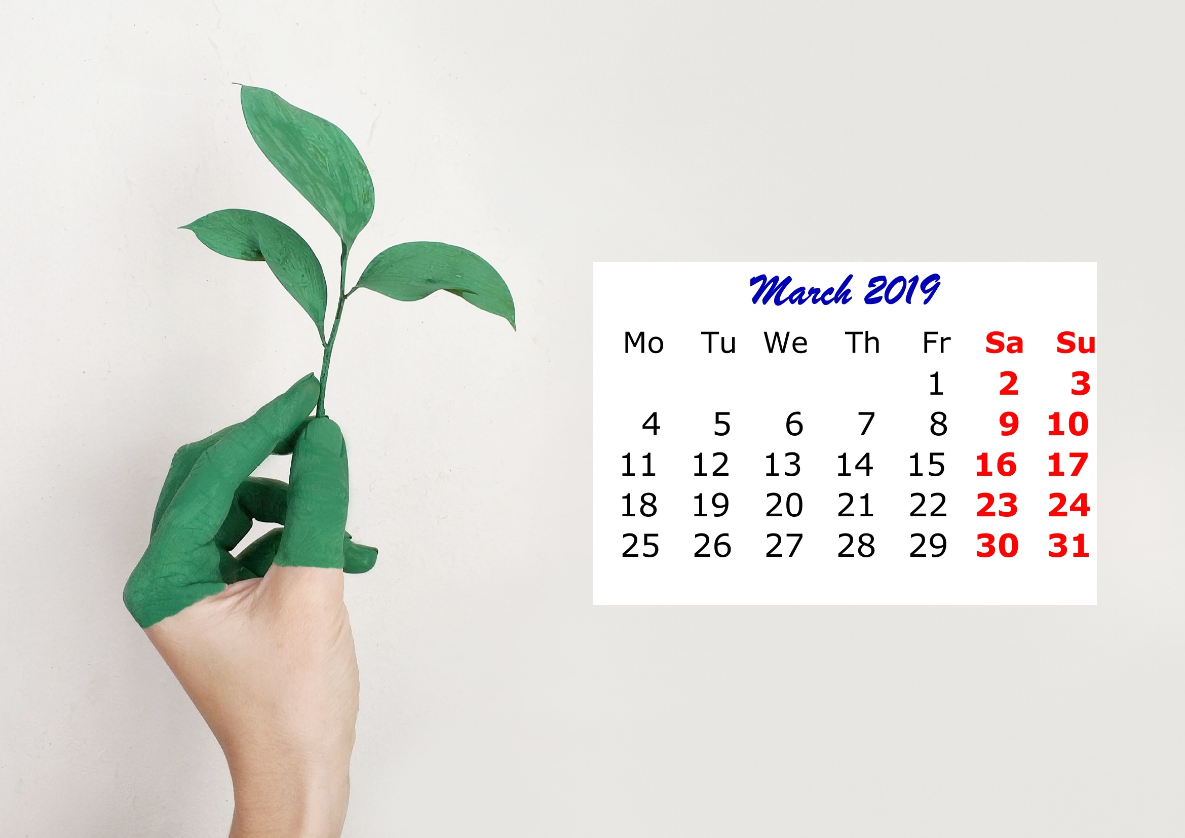 3 March Monthly 2019 Calendar Beautiful Painting Template