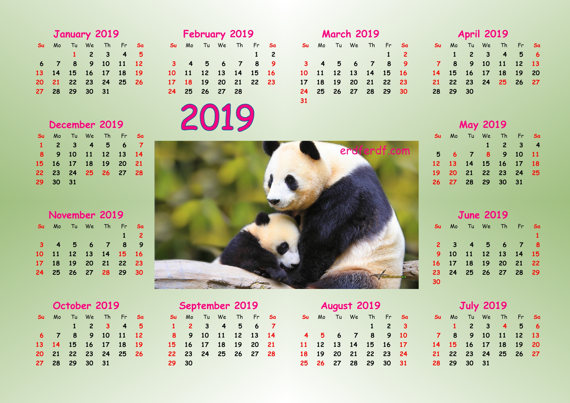 5 Cute Panda 2019 Calendar Printable for Free