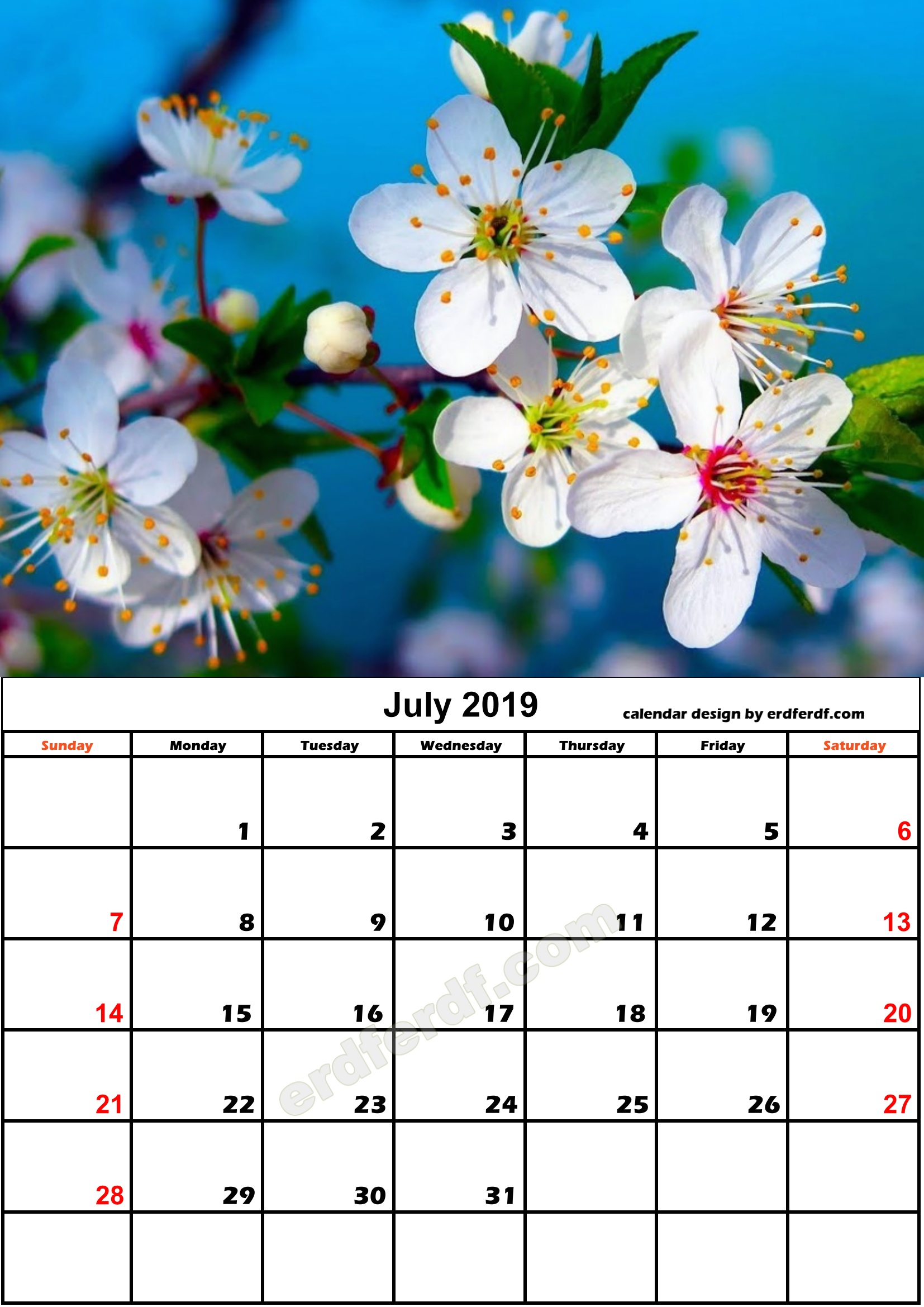 7 July Nature Calendar Monthly 2019 Free Download