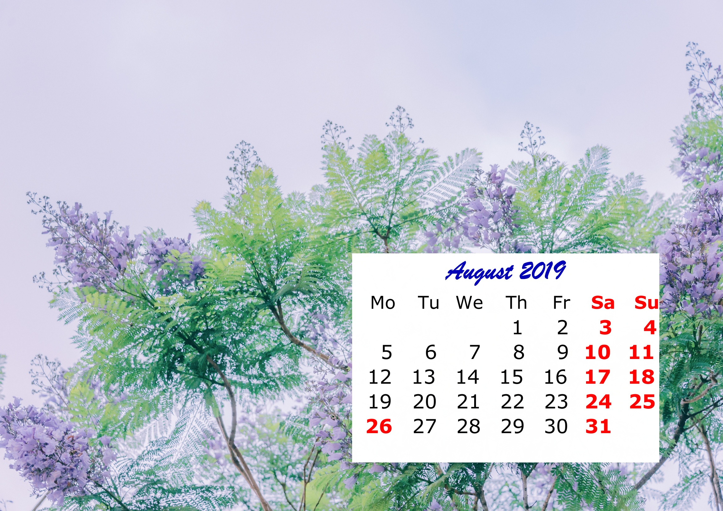 8 August Monthly 2019 Calendar Beautiful Painting Template