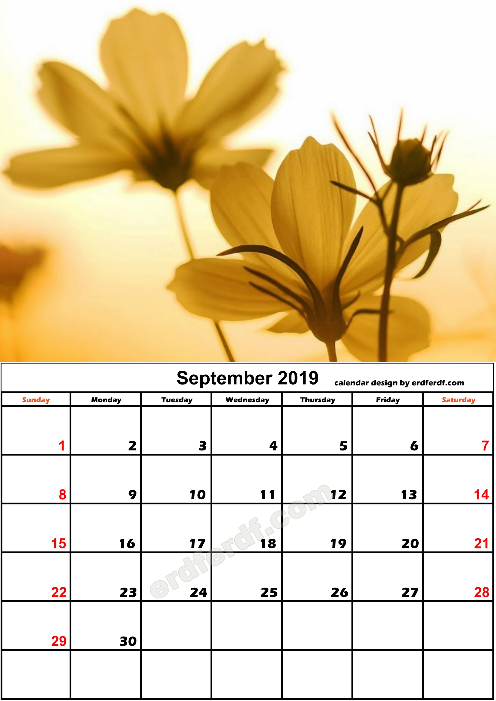 9 September Flower Nature Calendar Monthly 2019 Free Download