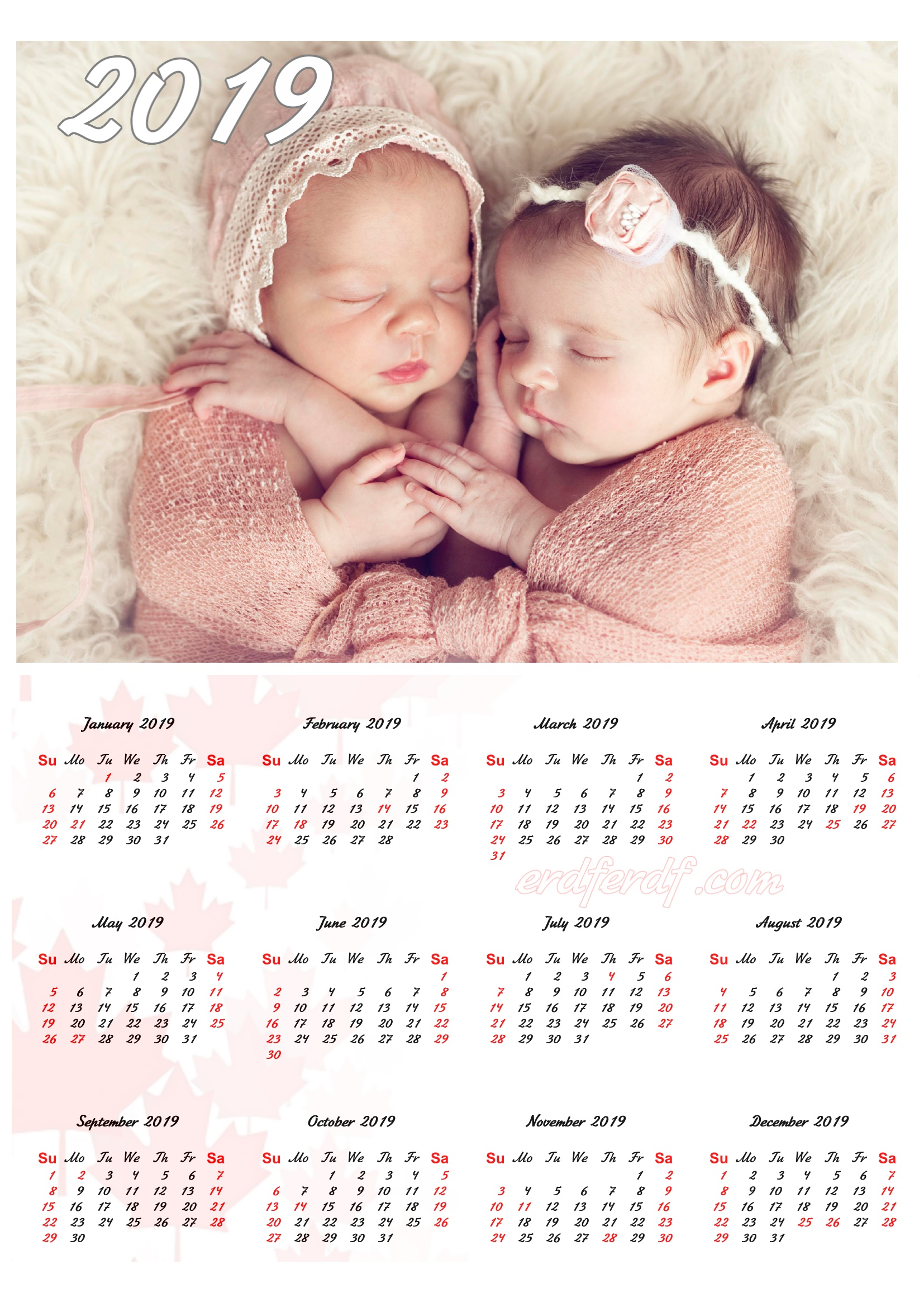 Cute Baby Canada 2019 Calendar Printable Free Download