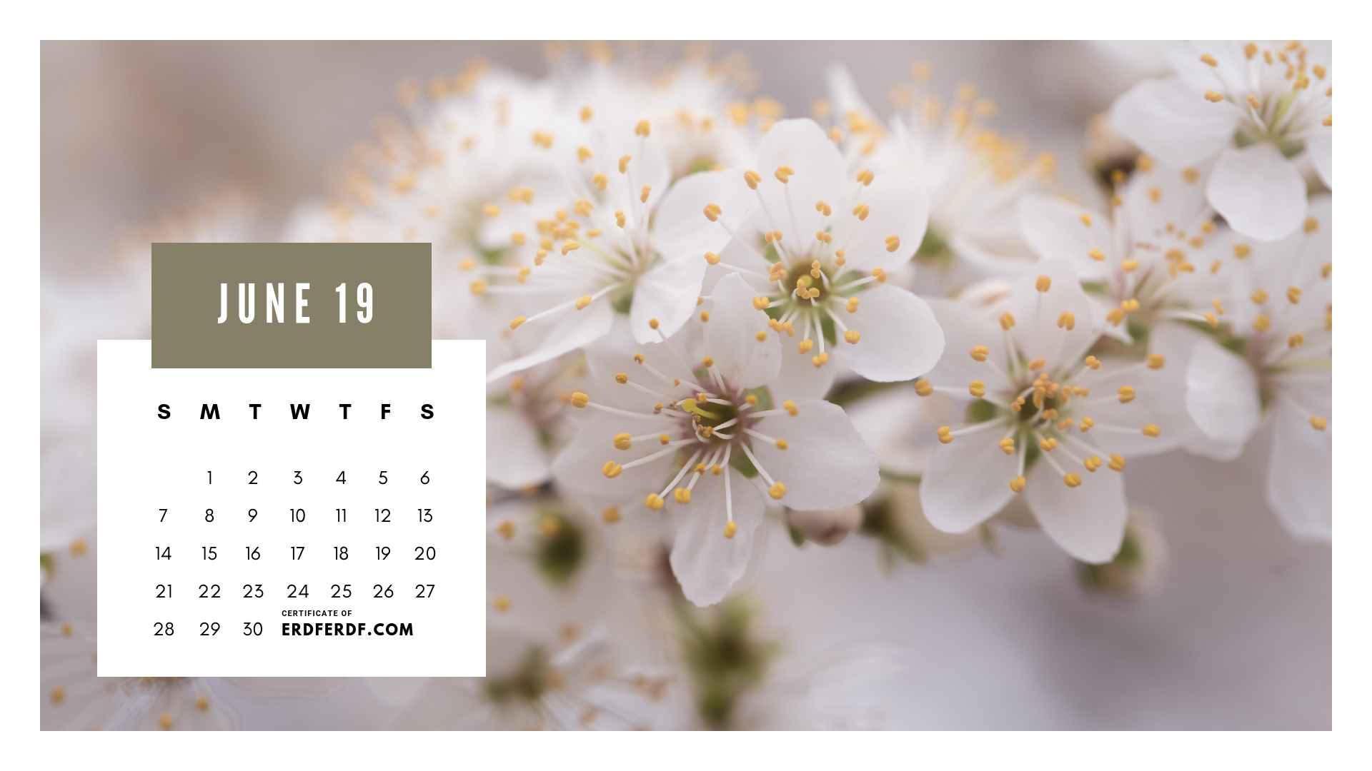 Ten Calendar June 2019 Spring Flower Template Printable 3