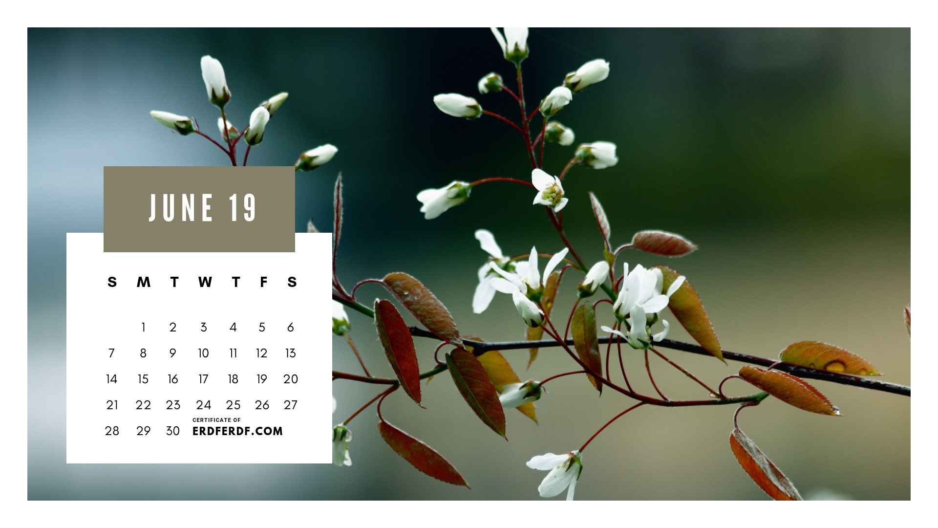 Ten Calendar June 2019 Spring Flower Template Printable 5