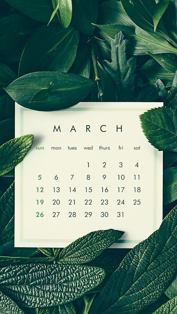 March Iphone Calendar Wallpaper in HD Quality 7