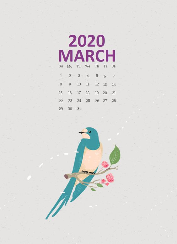 Cute Bird Iphone March 2020 Calendar Wallpaper Background