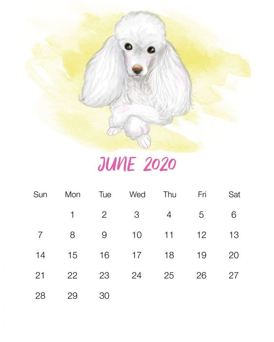 June 2020 Calendar Example Free Dog