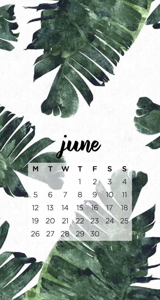 Floral Leaf June 2020 Calendar Wallpaper Iphone