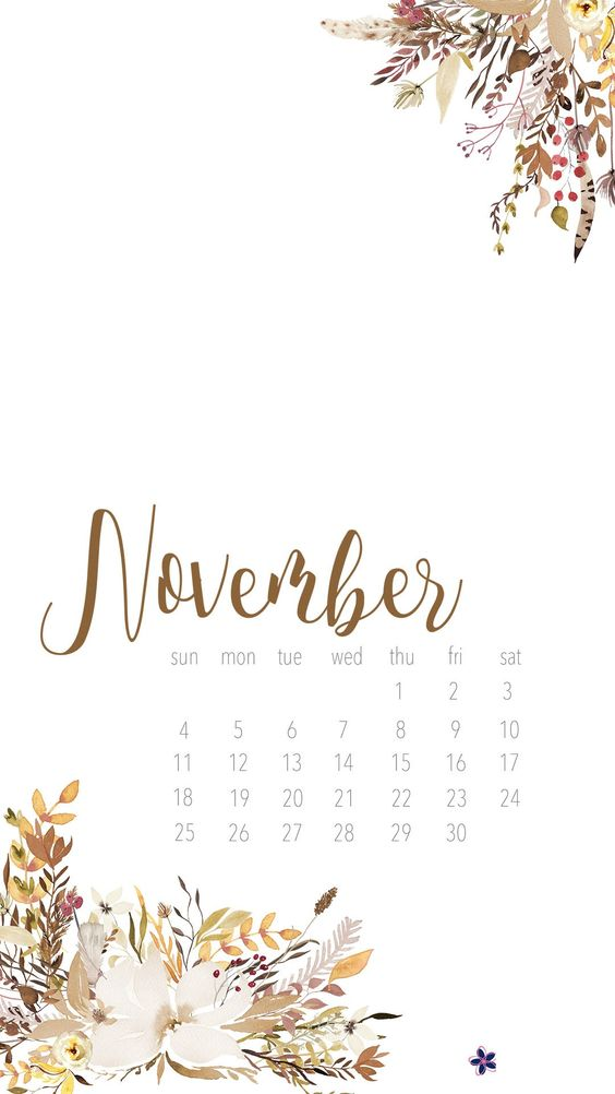 Floral November 2020 Calendar Iphone Android Wallpaper
