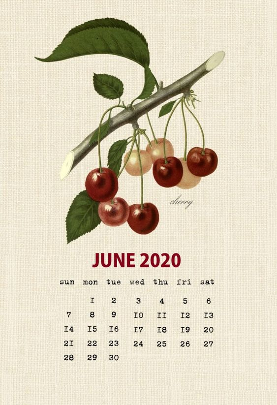 Fruit June 2020 Calendar Wallpaper Iphone