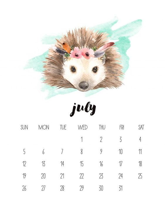 Hedgehog Animal Watercolor July 2020 Calendar Iphone