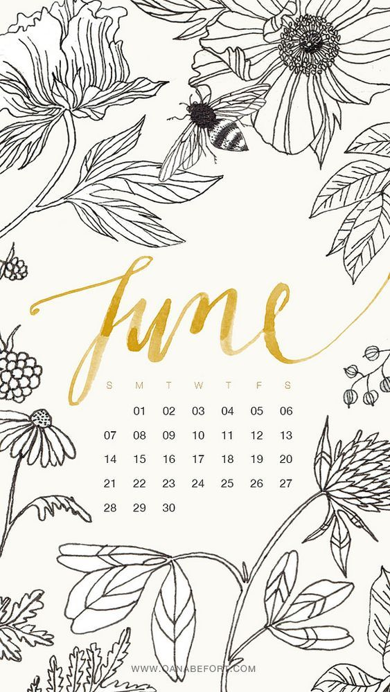 June 2020 Calendar Wallpaper Iphone Black Floral