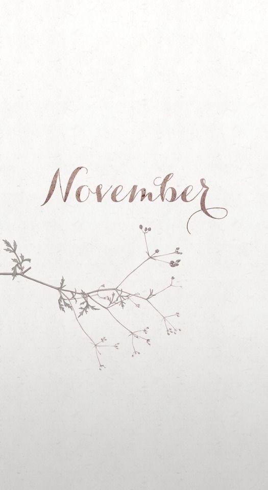 November 2020 Calendar House Desk