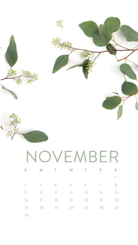 November 2020 Calendar Iphone Android Wallpaper