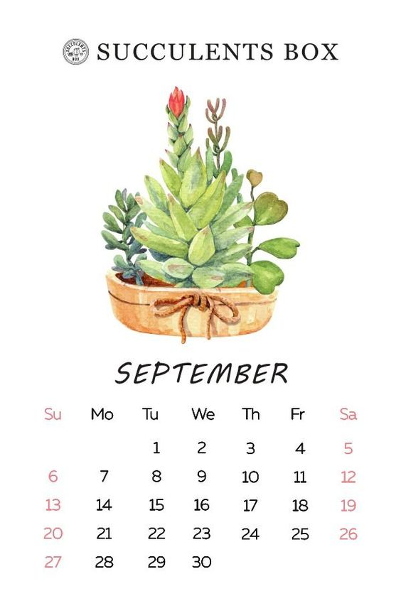 September 2020 Calendar Cute Free