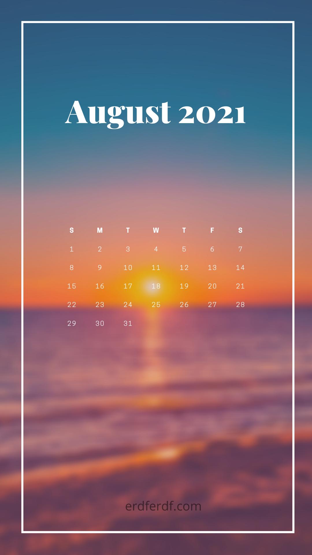 August 2021 Callendar Wallpaper Iphone Cat Cute Sun