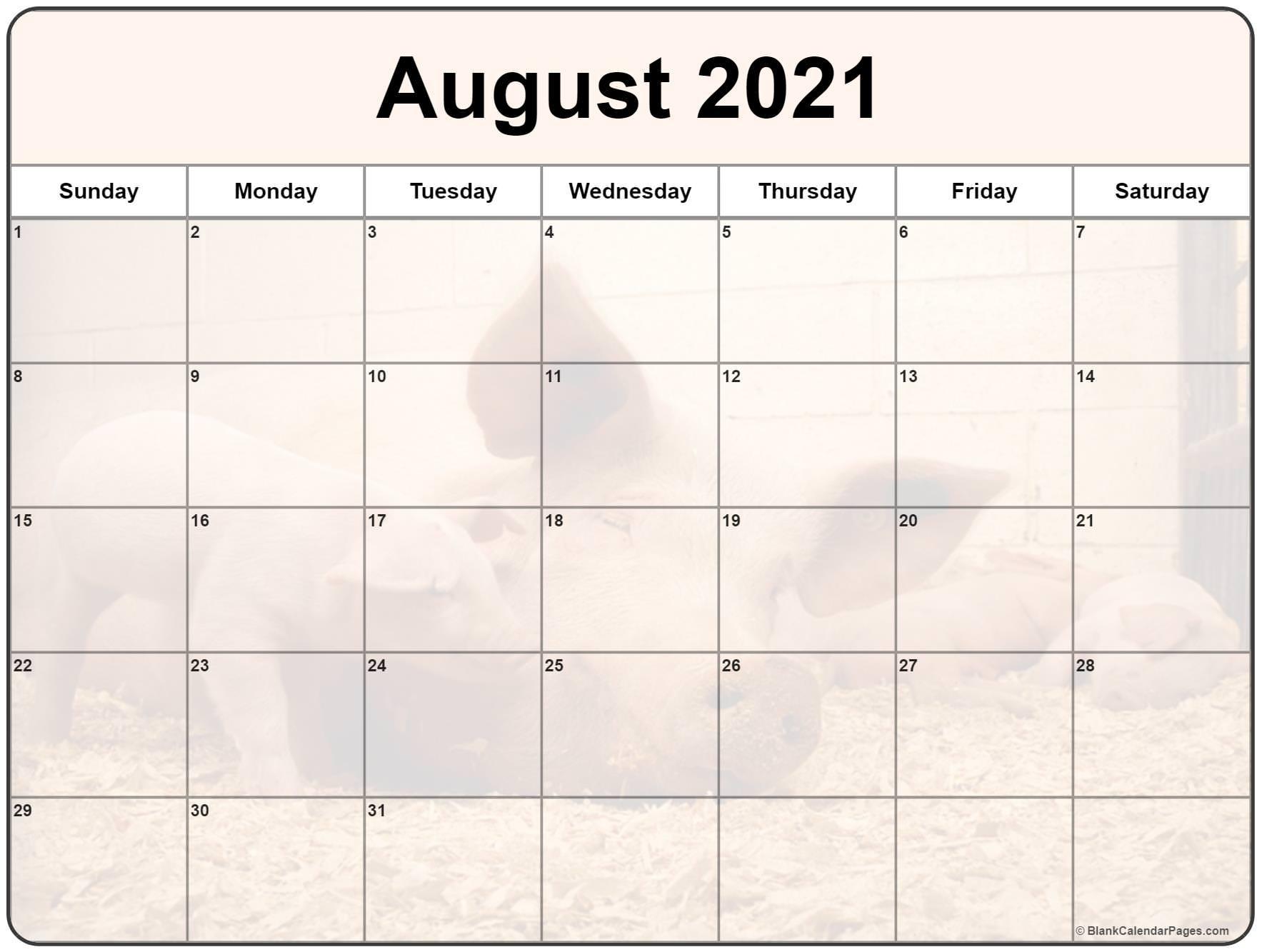 collection of august 2021 photo calendars::Cute Agust 2021 Calendar